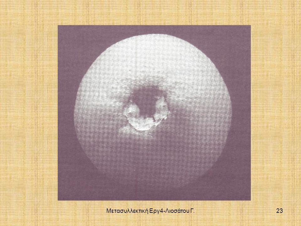 Μετασυλλεκτική Εργ4-Λιοσάτου Γ.23