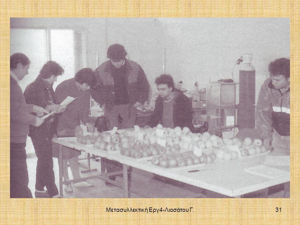 Μετασυλλεκτική Εργ4-Λιοσάτου Γ.31