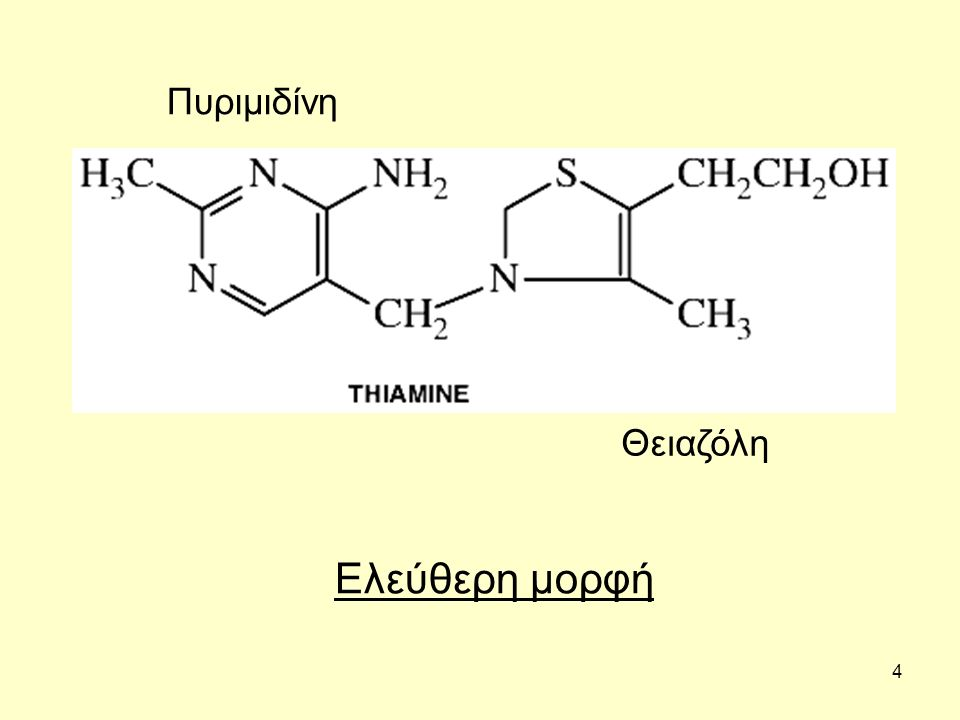 4 Πυριμιδίνη Θειαζόλη Ελεύθερη μορφή