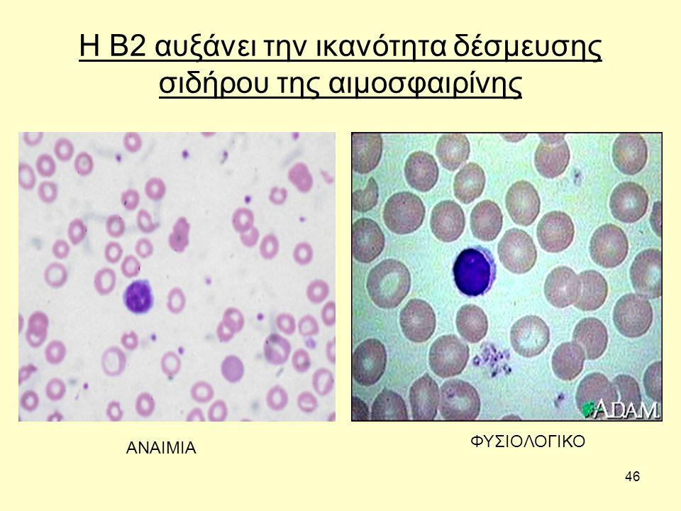 46 Η Β2 αυξάνει την ικανότητα δέσμευσης σιδήρου της αιμοσφαιρίνης ΑΝΑΙΜΙΑ ΦΥΣΙΟΛΟΓΙΚΟ