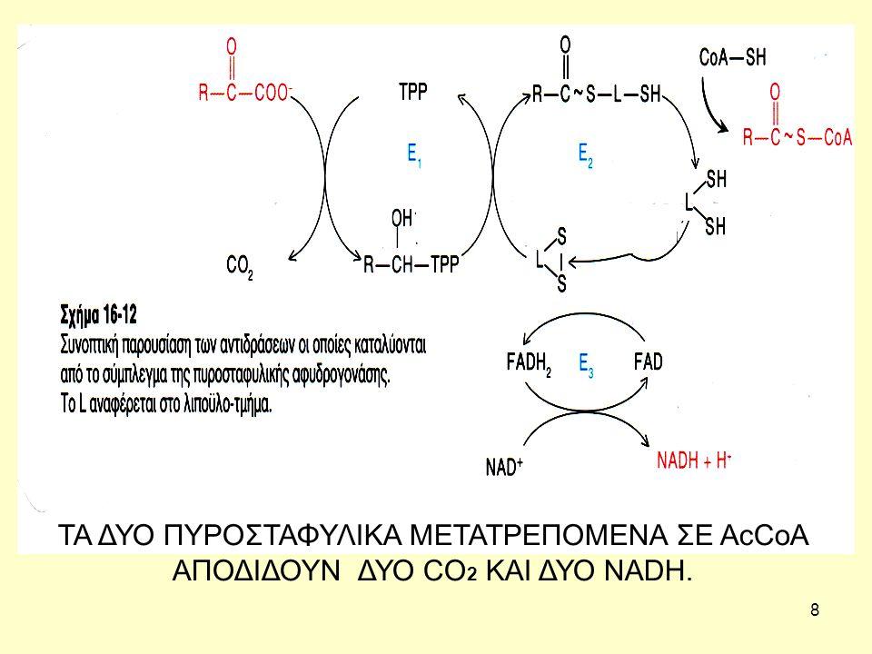 19 Ημερήσιες ανάγκες Βιταμίνης Β1 Οι απαιτήσεις σε θειαµίνη εξαρτώνται από την προσλαµβανόµενη ενέργεια και εκφράζονται σε mg/1000 kcal, αλλά και ως ολικές τιµές βασισµένες στις εκτιµώµενες µέσες ενεργειακές απαιτήσεις, για την πλειοψηφία του πληθυσµού.