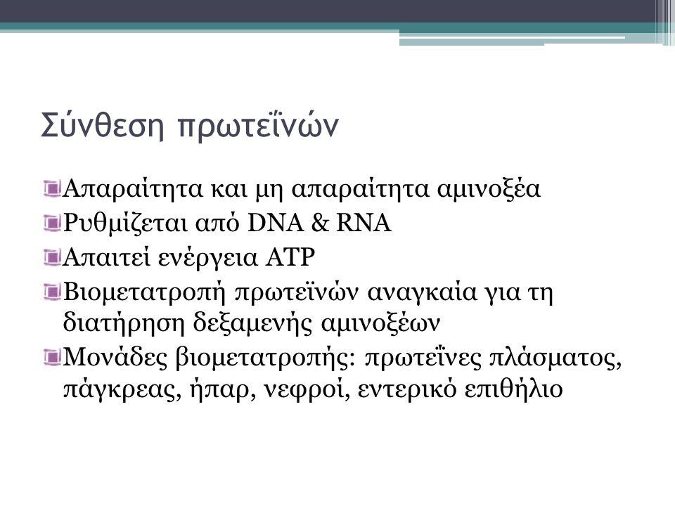 Σύνθεση πρωτεΐνών Απαραίτητα και μη απαραίτητα αμινοξέα Ρυθμίζεται από DNA & RNA Απαιτεί ενέργεια ATP Βιομετατροπή πρωτεϊνών αναγκαία για τη διατήρηση δεξαμενής αμινοξέων Μονάδες βιομετατροπής: πρωτεΐνες πλάσματος, πάγκρεας, ήπαρ, νεφροί, εντερικό επιθήλιο