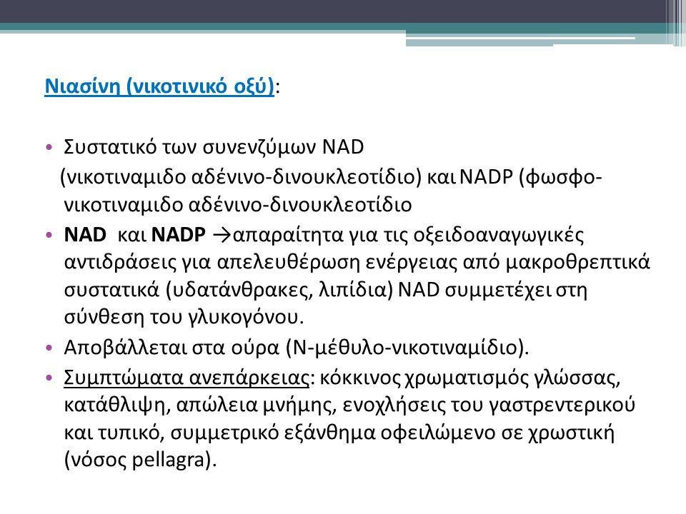 Νιασίνη (νικοτινικό οξύ): Συστατικό των συνενζύμων NAD (νικοτιναμιδο αδένινο-δινουκλεοτίδιο) και NADP (φωσφο- νικοτιναμιδο αδένινο-δινουκλεοτίδιο NAD και NADP →απαραίτητα για τις οξειδοαναγωγικές αντιδράσεις για απελευθέρωση ενέργειας από μακροθρεπτικά συστατικά (υδατάνθρακες, λιπίδια) NAD συμμετέχει στη σύνθεση του γλυκογόνου.