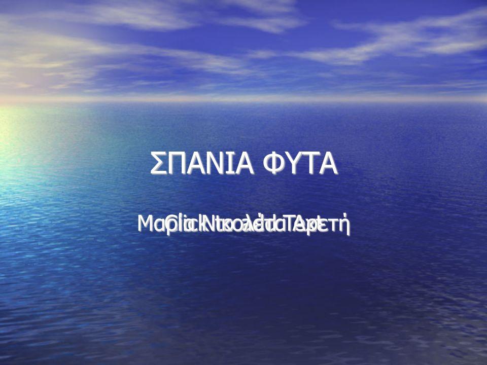 Click to add Text ΣΠΑΝΙΑ ΦΥΤΑ Μαρία Νικολέτα Αρετή