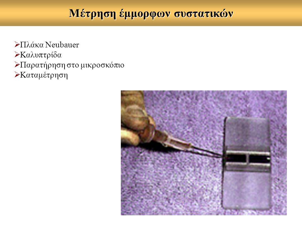 Μέτρηση έμμορφων συστατικών  Πλάκα Neubauer  Καλυπτρίδα  Παρατήρηση στο μικροσκόπιο  Καταμέτρηση