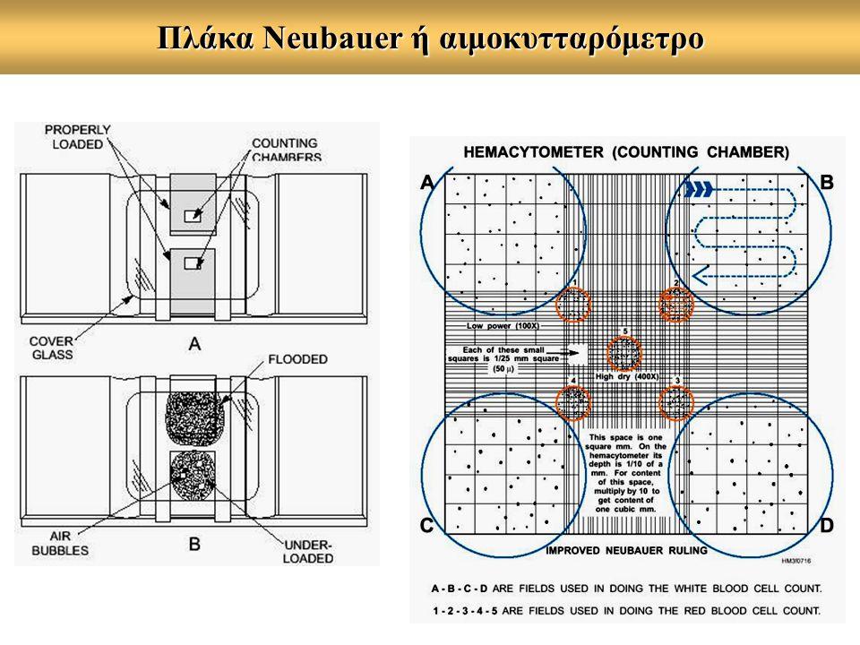 Πλάκα Neubauer ή αιμοκυτταρόμετρο