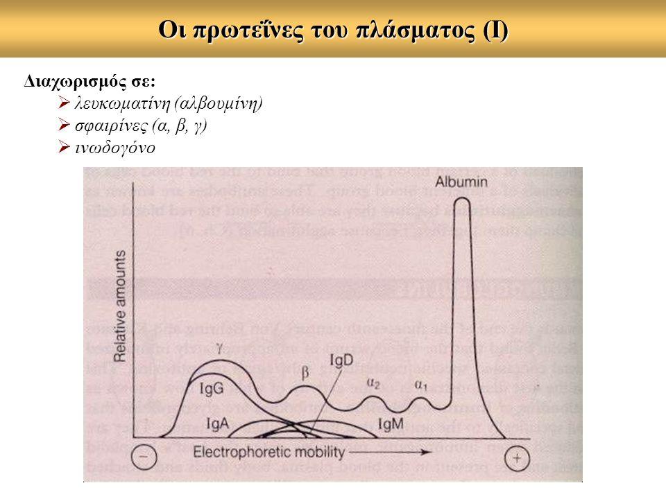 Oι πρωτεΐνες του πλάσματος (Ι) Διαχωρισμός σε:  λευκωματίνη (αλβουμίνη)  σφαιρίνες (α, β, γ)  ινωδογόνο