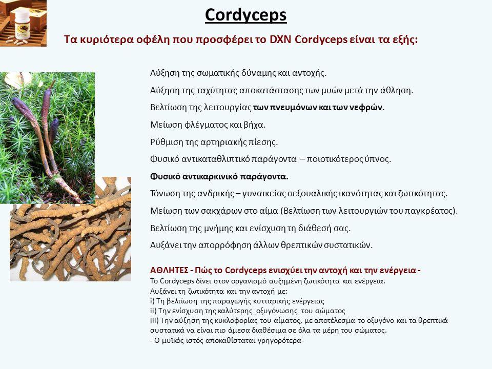 Cordyceps Αύξηση της σωματικής δύναμης και αντοχής.