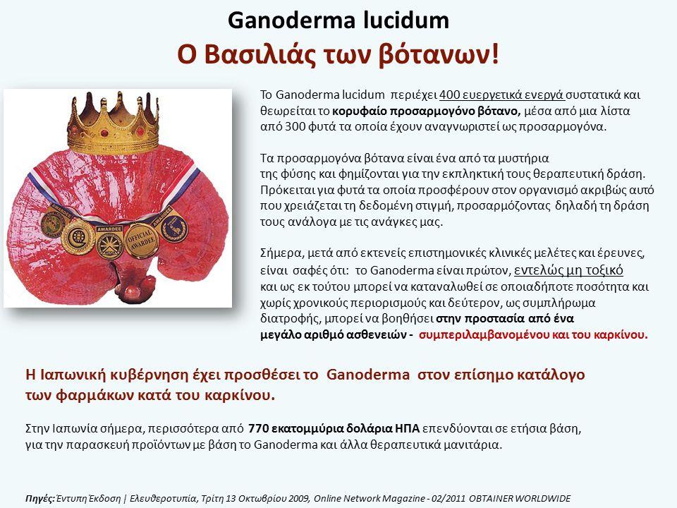 Το Ganoderma lucidum περιέχει 400 ευεργετικά ενεργά συστατικά και θεωρείται το κορυφαίο προσαρμογόνο βότανο, μέσα από μια λίστα από 300 φυτά τα οποία έχουν αναγνωριστεί ως προσαρμογόνα.