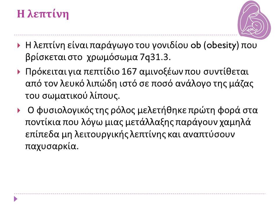 Η λεπτίνη  Η λεπτίνη είναι παράγωγο του γονιδίου ob (obesity) που βρίσκεται στο χρωμόσωμα 7q31.3.  Πρόκειται για πεπτίδιο 167 αμινοξέων που συντίθετ