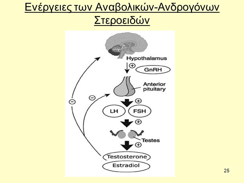25 Ενέργειες των Αναβολικών-Ανδρογόνων Στεροειδών