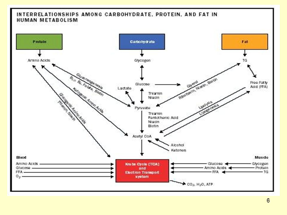 67 Ερυθροποιητίνη (EPO) (24) Η ερυθροποιητίνη είναι γλυκοπρωτεϊνική ορμόνη, που παράγεται από τα νεφρά, διεγείρει το μυελό των οστών, οδηγεί σε μια αύξηση της μάζας ερυθροκυττάρων, σε αύξηση της αιμοσφαιρίνης και του αιματοκρίτη.