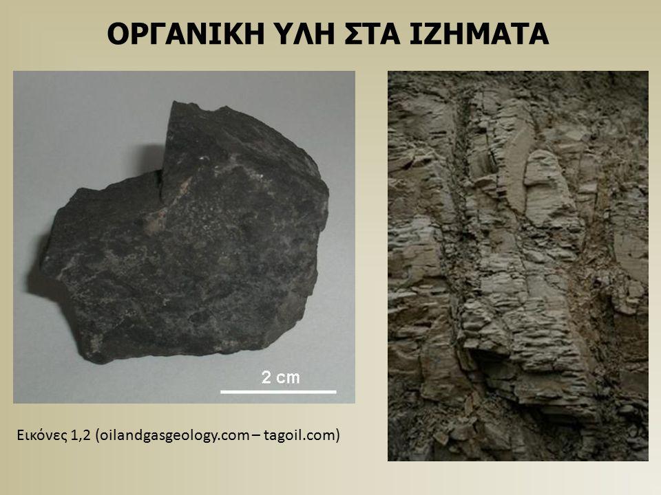 ΠΡΟΫΠΟΘΕΣΕΙΣ ΜΗΤΡΙΚΩΝ Οι δυο βασικές προϋποθέσεις για την παραγωγή αλλά και την διατήρηση της οργανικής ύλης στα ιζήματα είναι: Η Παραγωγικότητα (productivity) Η έλλειψη οξυγόνου στην υδάτινη στήλη και τον πυθμένα Ο συνδυασμός των δυο αυτών παραγόντων μπορεί να παράξει μητρικά πετρώματα (source rocks) Αυτά μπορούν να προκύψουν και από την επικράτηση του ενός από τους δυο παράγοντες σε διάφορες περιπτώσεις.