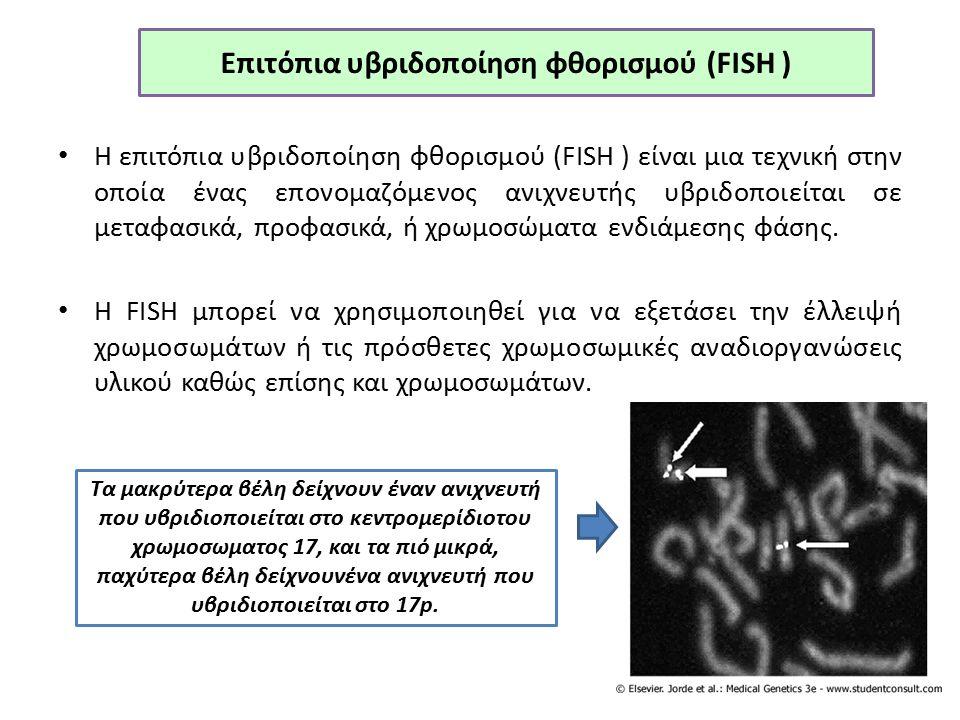 Επιτόπια υβριδοποίηση φθορισμού (FISH ) Η επιτόπια υβριδοποίηση φθορισμού (FISH ) είναι μια τεχνική στην οποία ένας επονομαζόμενος ανιχνευτής υβριδοποιείται σε μεταφασικά, προφασικά, ή χρωμοσώματα ενδιάμεσης φάσης.