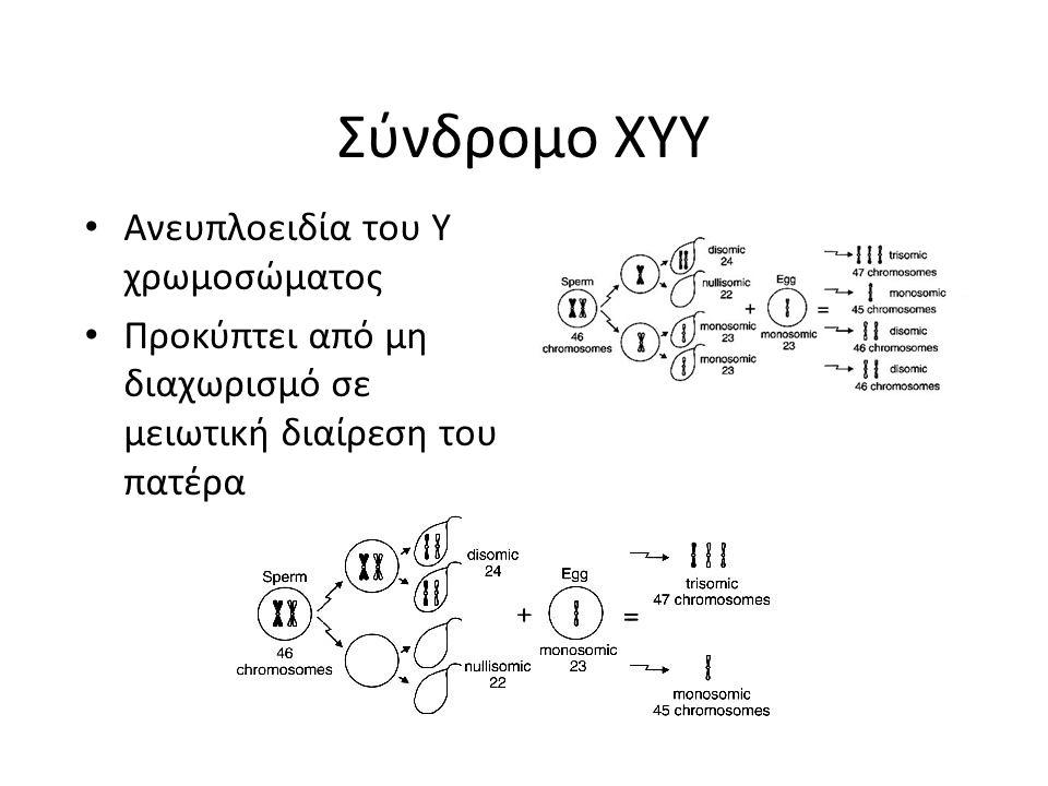 Σύνδρομο XYY Ανευπλοειδία του Y χρωμοσώματος Προκύπτει από μη διαχωρισμό σε μειωτική διαίρεση του πατέρα