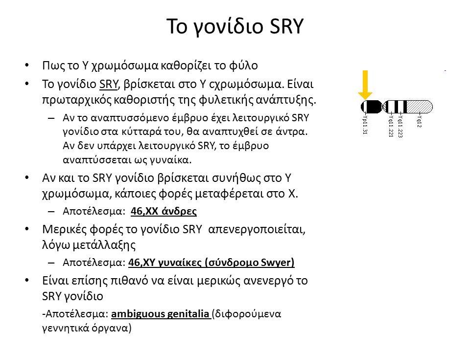 Το γονίδιο SRY Πως το Y χρωμόσωμα καθορίζει το φύλο Το γονίδιο SRY, βρίσκεται στο Y cχρωμόσωμα.