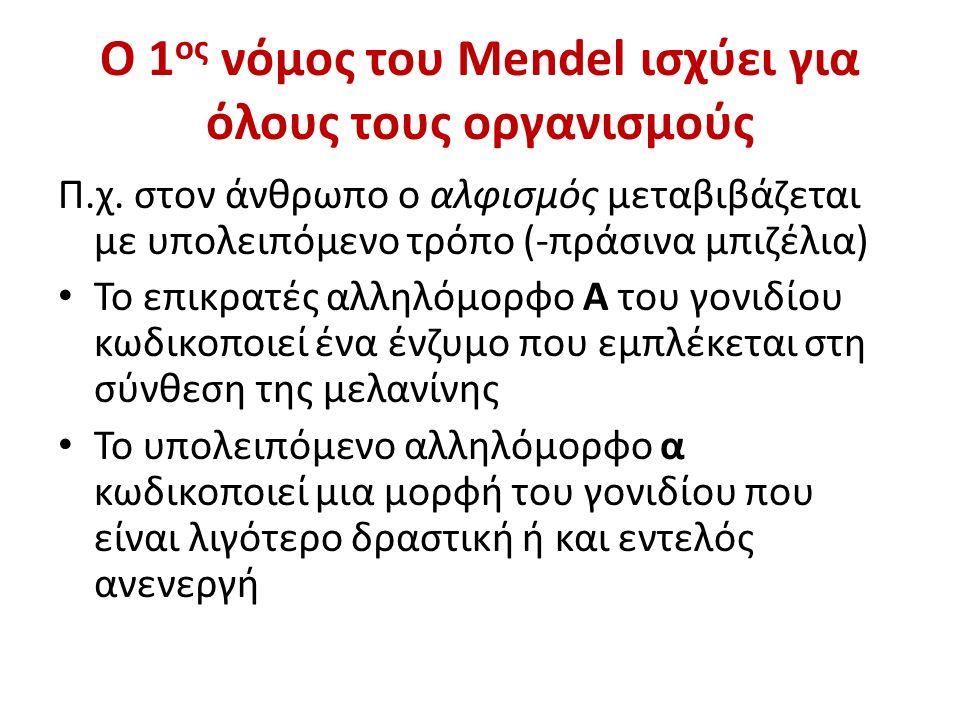 Ο 1 ος νόμος του Mendel ισχύει για όλους τους οργανισμούς Π.χ.