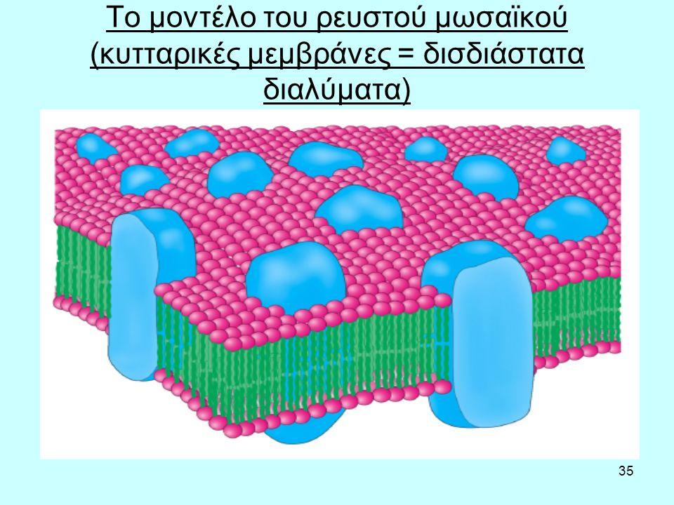 35 Το μοντέλο του ρευστού μωσαϊκού (κυτταρικές μεμβράνες = δισδιάστατα διαλύματα)