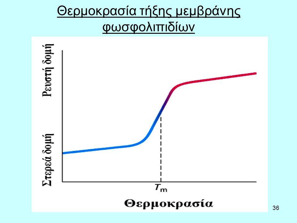 36 Θερμοκρασία τήξης μεμβράνης φωσφολιπιδίων