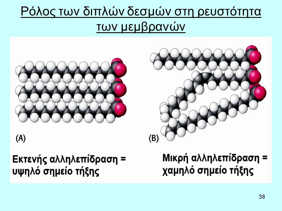 38 Ρόλος των διπλών δεσμών στη ρευστότητα των μεμβρανών