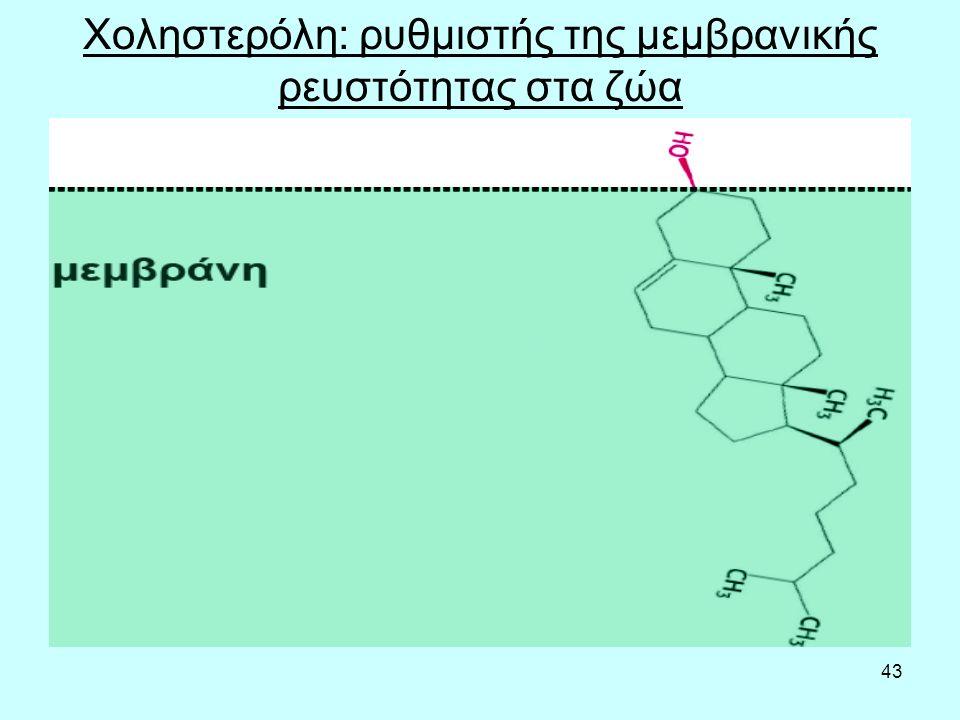 43 Χοληστερόλη: ρυθμιστής της μεμβρανικής ρευστότητας στα ζώα