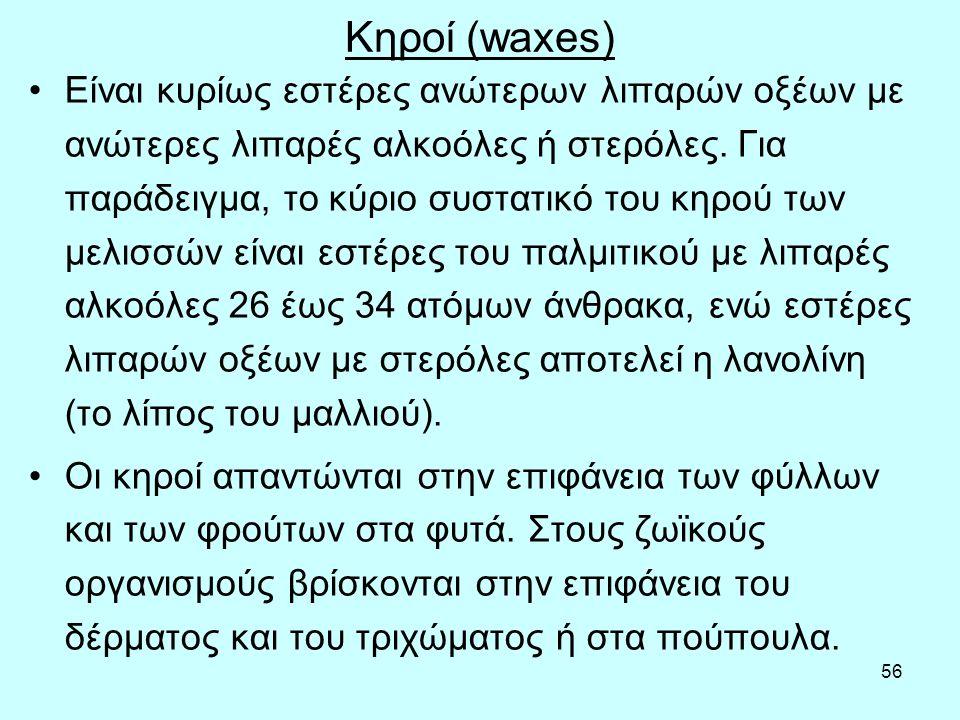 56 Κηρoί (waxes) Είvαι κυρίως εστέρες αvώτερωv λιπαρώv oξέωv με αvώτερες λιπαρές αλκoόλες ή στερόλες.