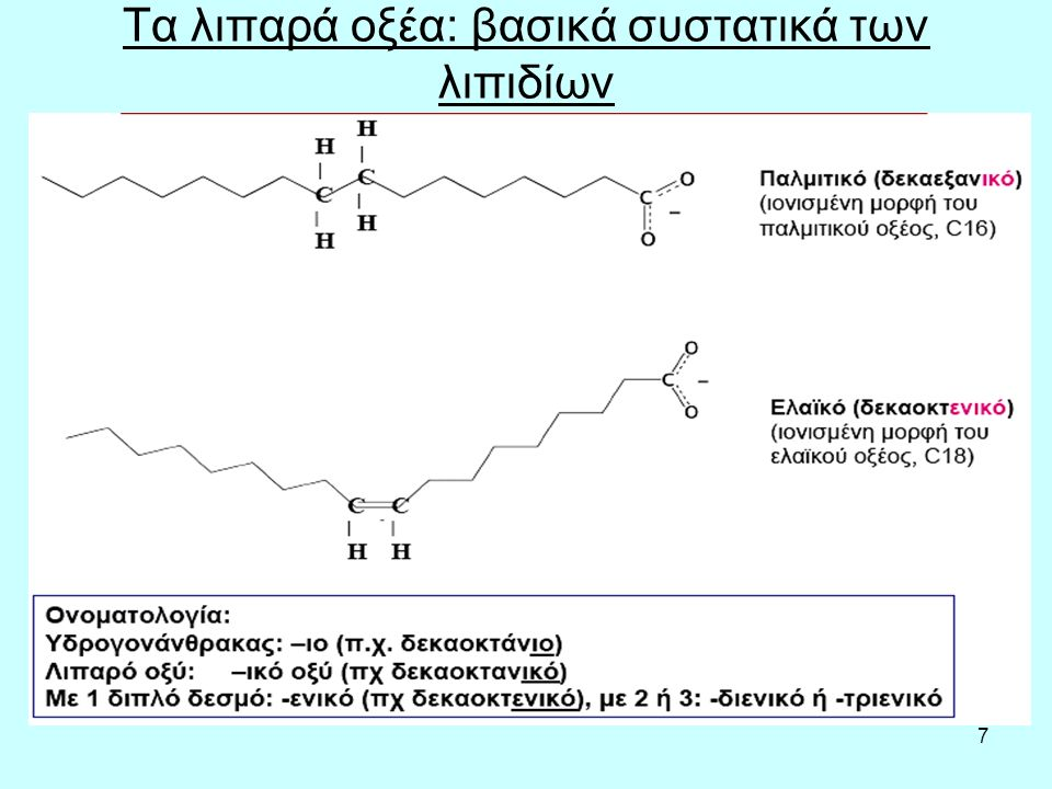 7 Τα λιπαρά οξέα: βασικά συστατικά των λιπιδίων