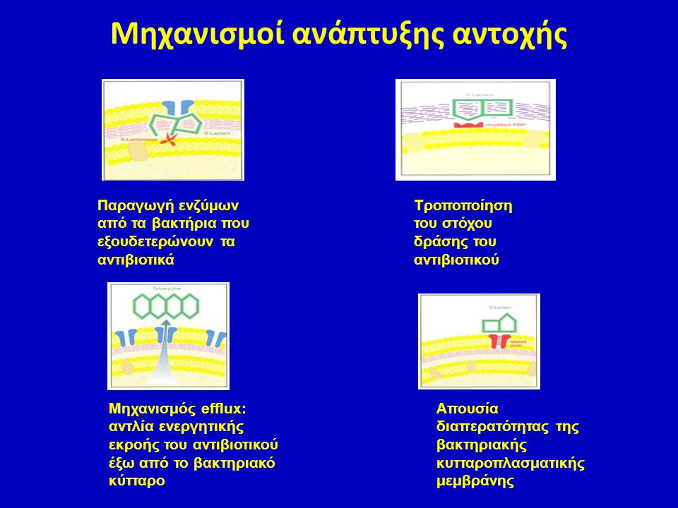 Παραγωγή ενζύμων από τα βακτήρια που εξουδετερώνουν τα αντιβιοτικά Τροποποίηση του στόχου δράσης του αντιβιοτικού Απουσία διαπερατότητας της βακτηριακ