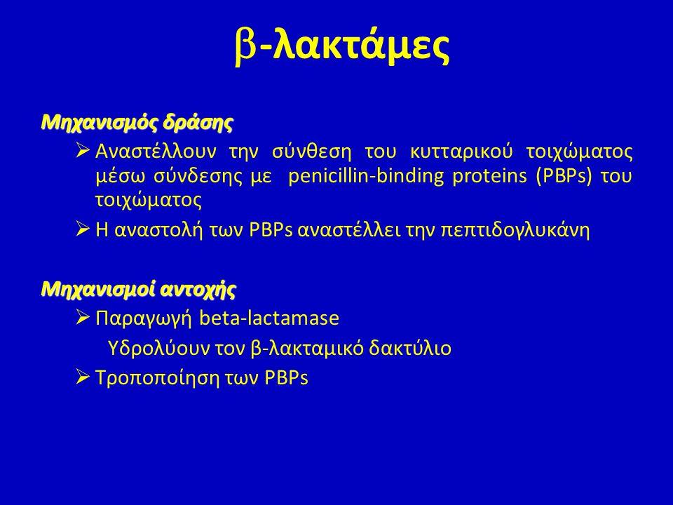  μηχανισμός δράσης Δεσμεύουν 30S υπομονάδα ριβοσώματος, αναστολή πρωτεϊνοσύνθεσης  μηχανισμοί αντοχής Μειωμένη διαπερατότητα κυτταρικής μεμβράνης Αλλαγή στόχου δράσης (ριβόσωμα) Σύνθεση ενζύμων που τις αδρανοποιούν Ταχέως βακτηριοκτόνες Ταχέως βακτηριοκτόνες Αμινογλυκοσίδες (αμικασίνη, γενταμυκίνη)