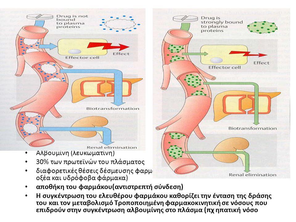 Αλβουμίνη (λευκωματίνη) 30% των πρωτεϊνών του πλάσματος διαφορετικές θέσεις δέσμευσης φαρμάκων (ισχυρότερη συγγένεια για ασθενή οξέα και υδρόφοβα φάρμ