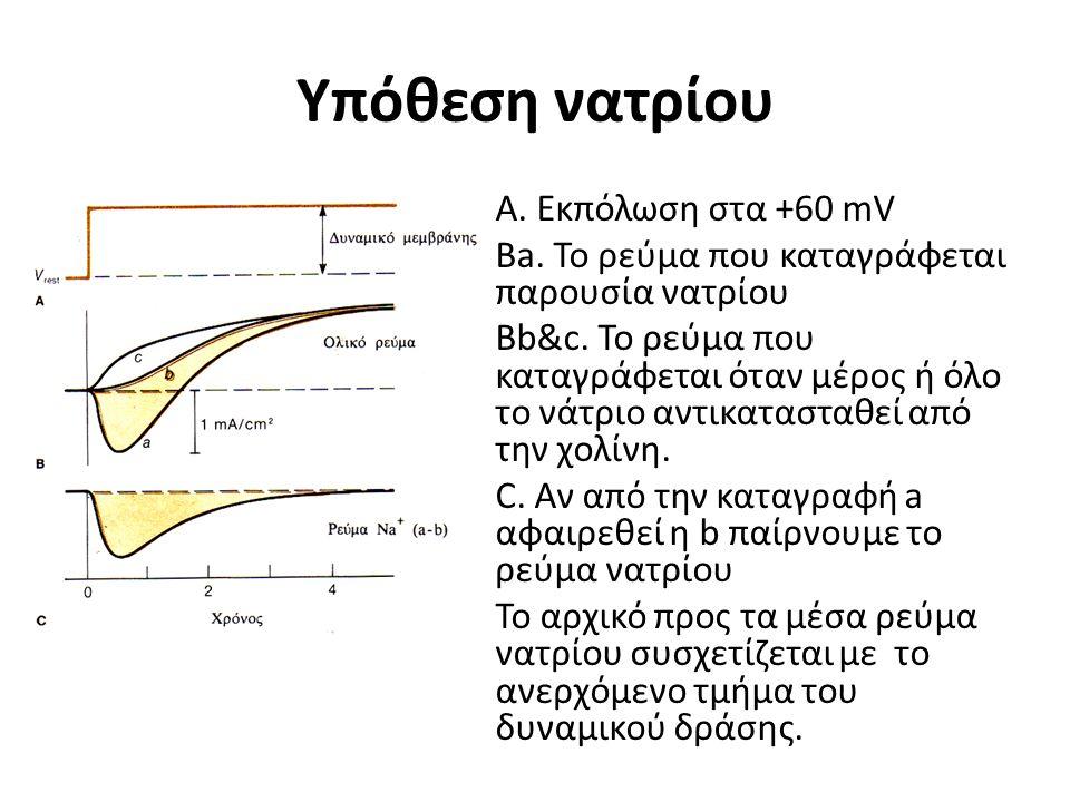Υπόθεση νατρίου Α. Εκπόλωση στα +60 mV Ba. Το ρεύμα που καταγράφεται παρουσία νατρίου Βb&c. Το ρεύμα που καταγράφεται όταν μέρος ή όλο το νάτριο αντικ