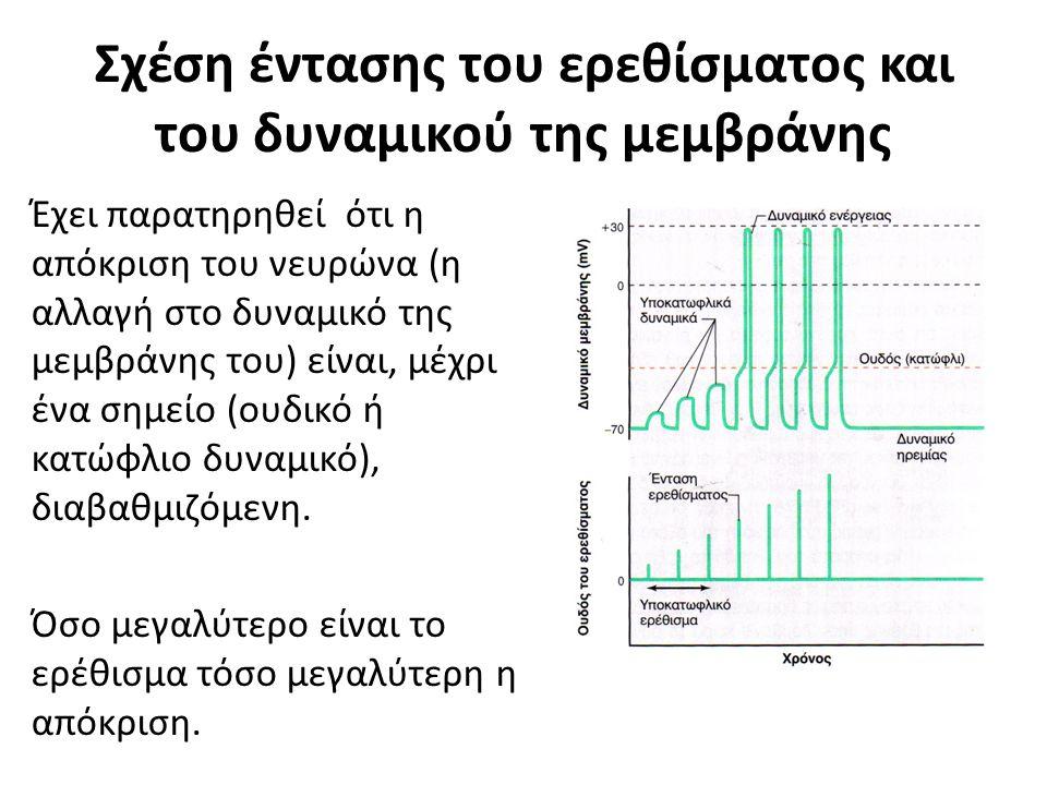 Σχέση έντασης του ερεθίσματος και του δυναμικού της μεμβράνης Έχει παρατηρηθεί ότι η απόκριση του νευρώνα (η αλλαγή στο δυναμικό της μεμβράνης του) είναι, μέχρι ένα σημείο (ουδικό ή κατώφλιο δυναμικό), διαβαθμιζόμενη.