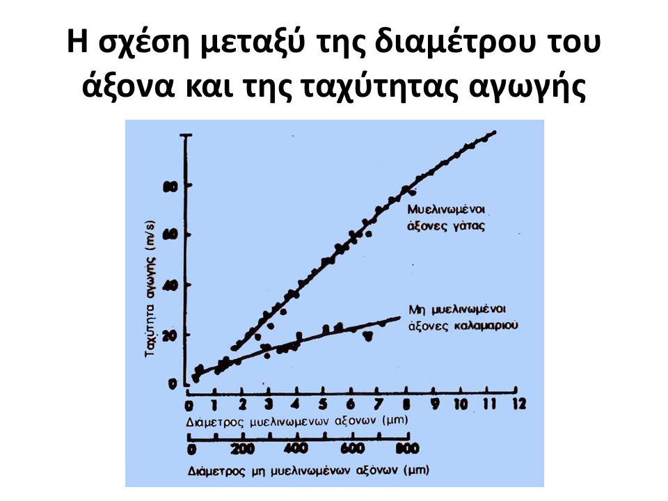 Η σχέση μεταξύ της διαμέτρου του άξονα και της ταχύτητας αγωγής