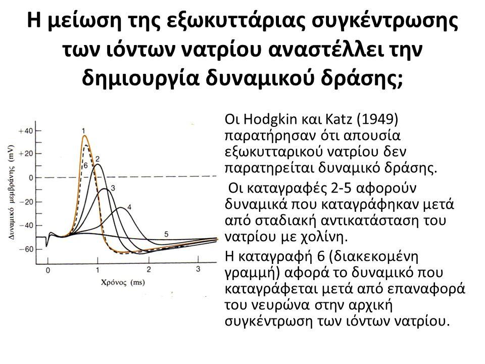 Η μείωση της εξωκυττάριας συγκέντρωσης των ιόντων νατρίου αναστέλλει την δημιουργία δυναμικού δράσης; Οι Hodgkin και Katz (1949) παρατήρησαν ότι απουσία εξωκυτταρικού νατρίου δεν παρατηρείται δυναμικό δράσης.