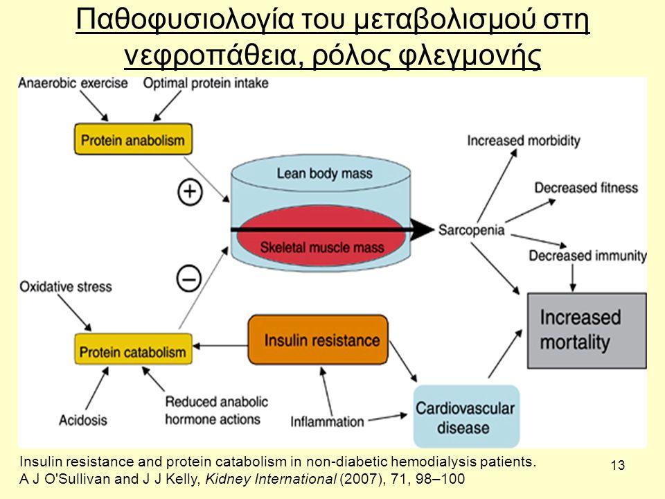 13 Παθοφυσιολογία του μεταβολισμού στη νεφροπάθεια, ρόλος φλεγμονής Insulin resistance and protein catabolism in non-diabetic hemodialysis patients.