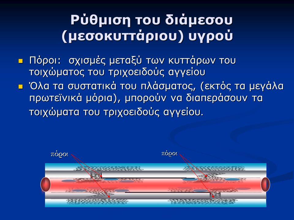 Ρύθμιση του διάμεσου (μεσοκυττάριου) υγρού Ρύθμιση του διάμεσου (μεσοκυττάριου) υγρού Πόροι: σχισμές μεταξύ των κυττάρων του τοιχώματος του τριχοειδούς αγγείου Πόροι: σχισμές μεταξύ των κυττάρων του τοιχώματος του τριχοειδούς αγγείου Όλα τα συστατικά του πλάσματος, (εκτός τα μεγάλα πρωτεϊνικά μόρια), μπορούν να διαπεράσουν τα τοιχώματα του τριχοειδούς αγγείου.