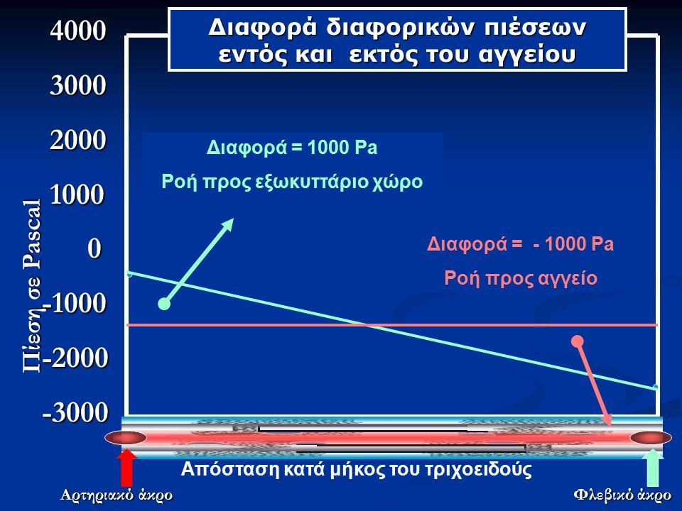 4000 4000 3000 3000 2000 2000 1000 1000 0-1000-2000-3000 Απόσταση κατά μήκος του τριχοειδούς Αρτηριακό άκρο Φλεβικό άκρο Πίεση σε Pascal Διαφορά διαφορικών πιέσεων εντός και εκτός του αγγείου Διαφορά = 1000 Pa Ροή προς εξωκυττάριο χώρο Διαφορά = - 1000 Pa Ροή προς αγγείο