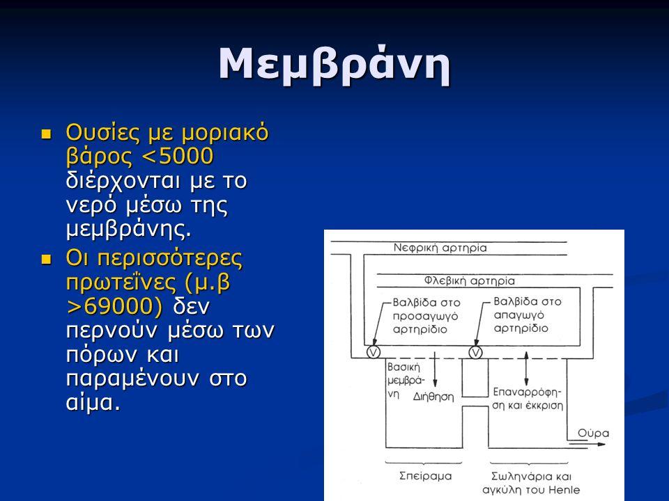 Μεμβράνη Ουσίες με μοριακό βάρος <5000 διέρχονται με το νερό μέσω της μεμβράνης. Ουσίες με μοριακό βάρος <5000 διέρχονται με το νερό μέσω της μεμβράνη