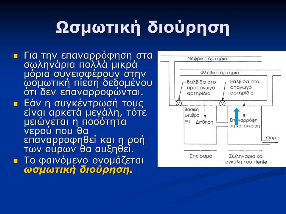 Ωσμωτική διούρηση Για την επαναρρόφηση στα σωληνάρια πολλά μικρά μόρια συνεισφέρουν στην ωσμωτική πίεση δεδομένου ότι δεν επαναρροφώνται.