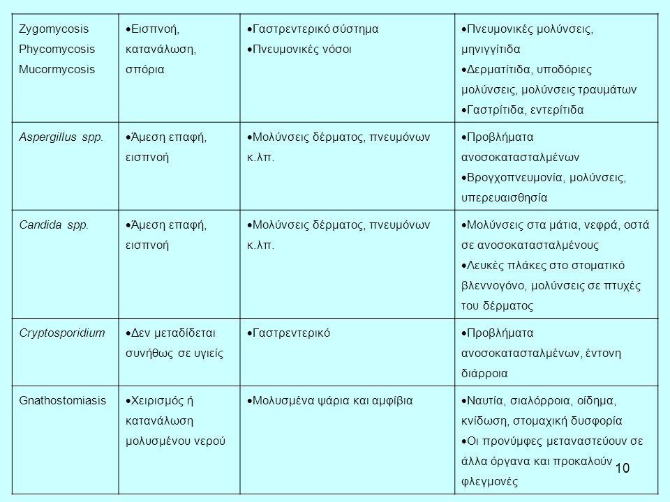 10 Zygomycosis Phycomycosis Mucormycosis  Εισπνοή, κατανάλωση, σπόρια  Γαστρεντερικό σύστημα  Πνευμονικές νόσοι  Πνευμονικές μολύνσεις, μηνιγγίτιδα  Δερματίτιδα, υποδόριες μολύνσεις, μολύνσεις τραυμάτων  Γαστρίτιδα, εντερίτιδα Aspergillus spp.