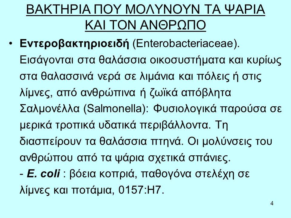 4 Εντεροβακτηριοειδή (Enterobacteriaceae).
