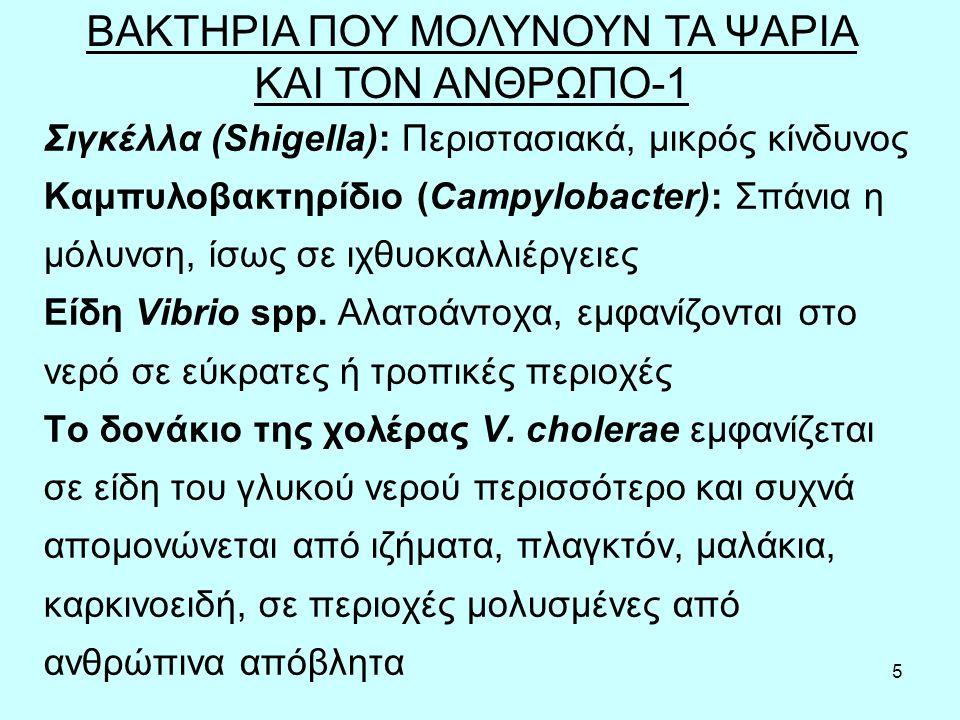 5 Σιγκέλλα (Shigella): Περιστασιακά, μικρός κίνδυνος Καμπυλοβακτηρίδιο (Campylobacter): Σπάνια η μόλυνση, ίσως σε ιχθυοκαλλιέργειες Είδη Vibrio spp.