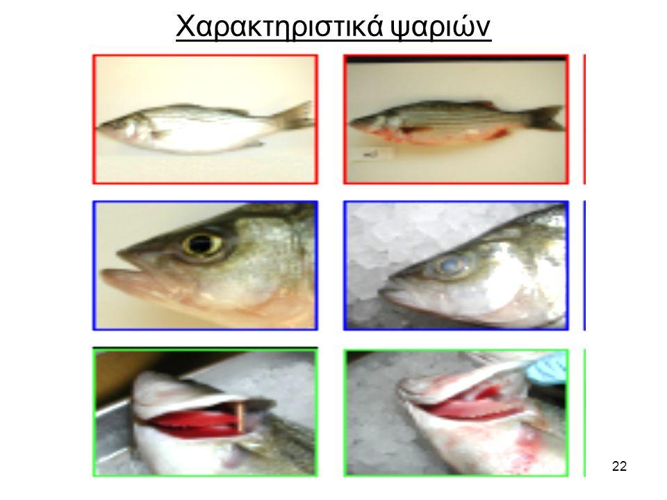 22 Χαρακτηριστικά ψαριών
