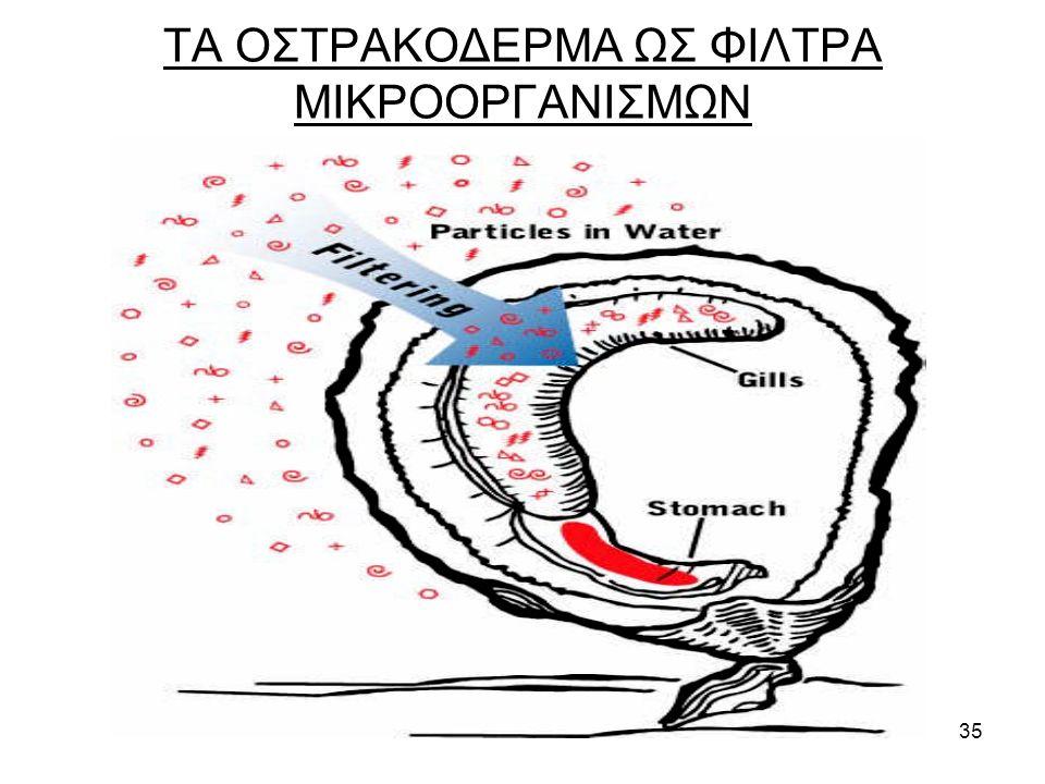 35 ΤΑ ΟΣΤΡΑΚΟΔΕΡΜΑ ΩΣ ΦΙΛΤΡΑ ΜΙΚΡΟΟΡΓΑΝΙΣΜΩΝ