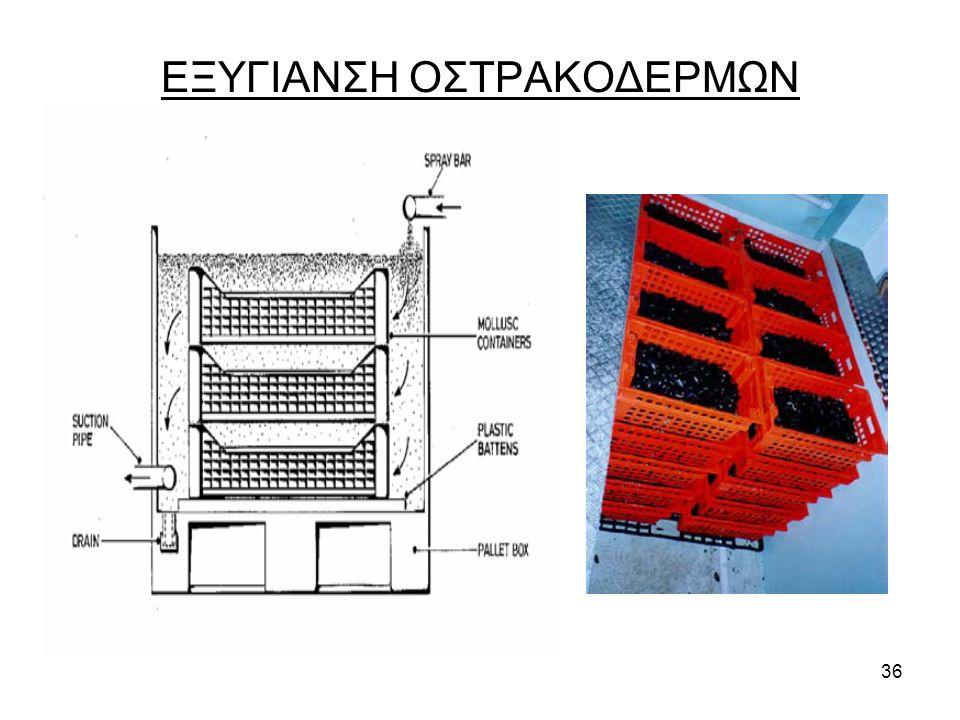 36 ΕΞΥΓΙΑΝΣΗ ΟΣΤΡΑΚΟΔΕΡΜΩΝ