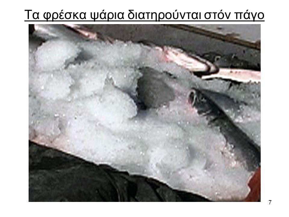 7 Τα φρέσκα ψάρια διατηρούνται στόν πάγο