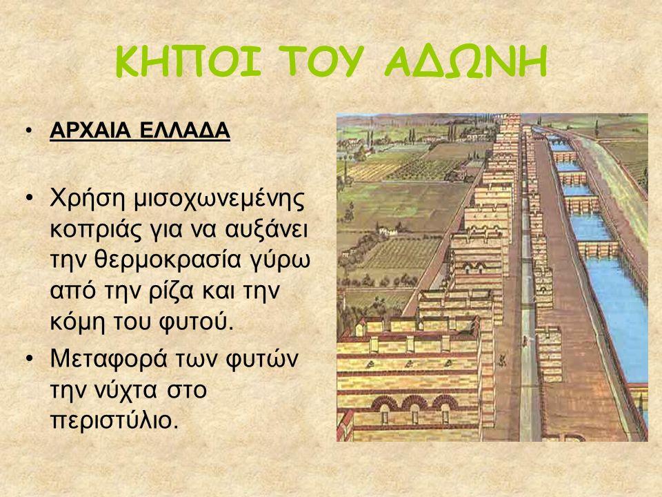 ΑΜΦΙΚΛΙΝΕΣ ΔΙΠΛΟ ΞΥΛΙΝΟ