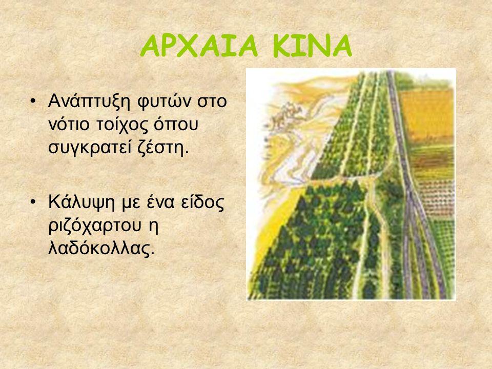 ΕΥΡΩΠΗ 16 ος & 17 ος ΑΙΩΝΑΣ Μεταφορά φυτών από διάφορες αποικίες με την ανάπτυξη της ναυτιλίας.