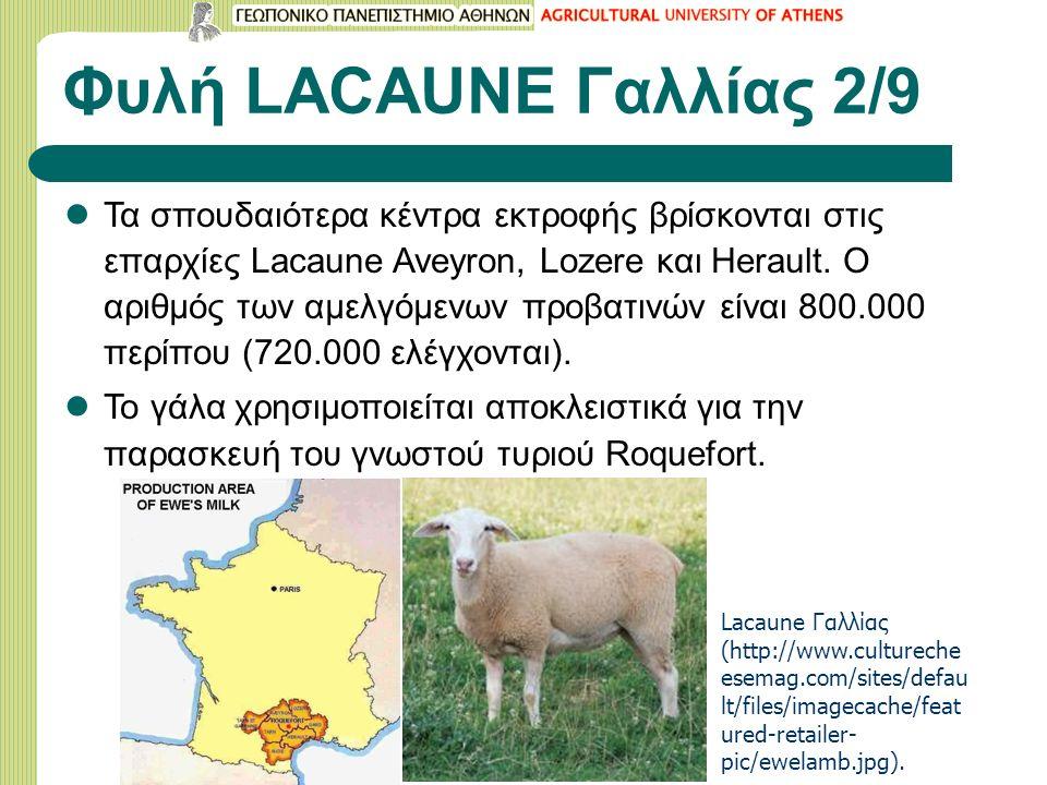 Φυλή LACAUNE Γαλλίας 2/9 Τα σπουδαιότερα κέντρα εκτροφής βρίσκονται στις επαρχίες Lacaune Aveyron, Lozere και Herault. Ο αριθμός των αμελγόμενων προβα