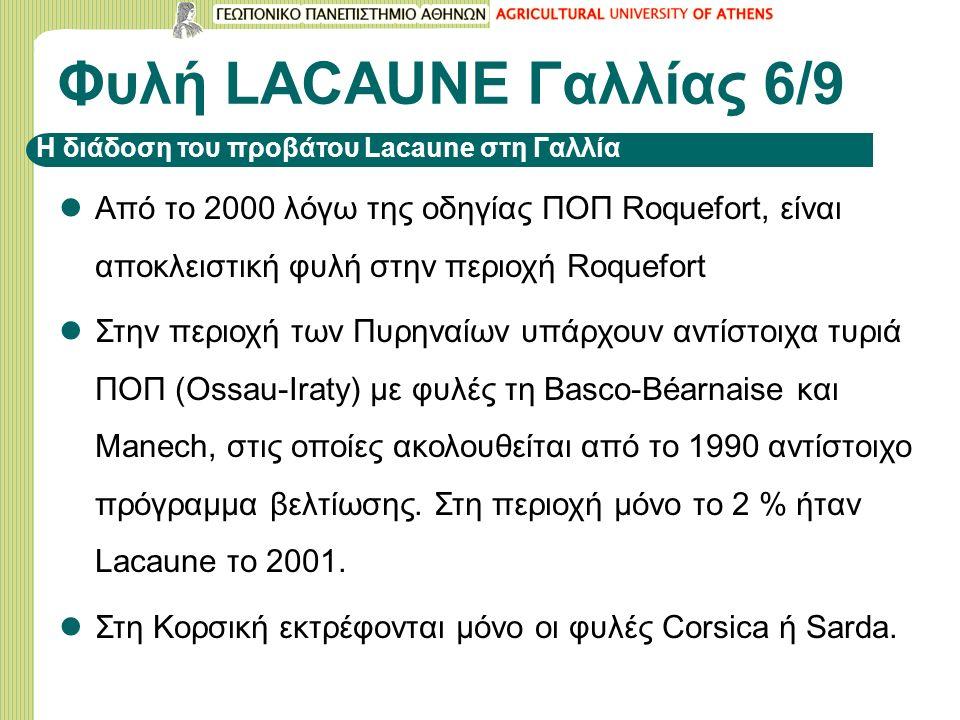 Φυλή LACAUNE Γαλλίας 6/9 Από το 2000 λόγω της οδηγίας ΠΟΠ Roquefort, είναι αποκλειστική φυλή στην περιοχή Roquefort Στην περιοχή των Πυρηναίων υπάρχου